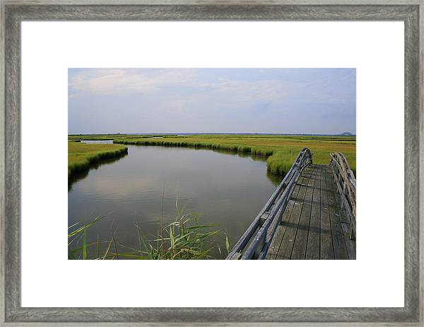 Captree Wetlands Foot Bridge Framed Print