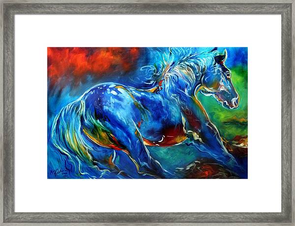 Captured Wild Stallion Framed Print