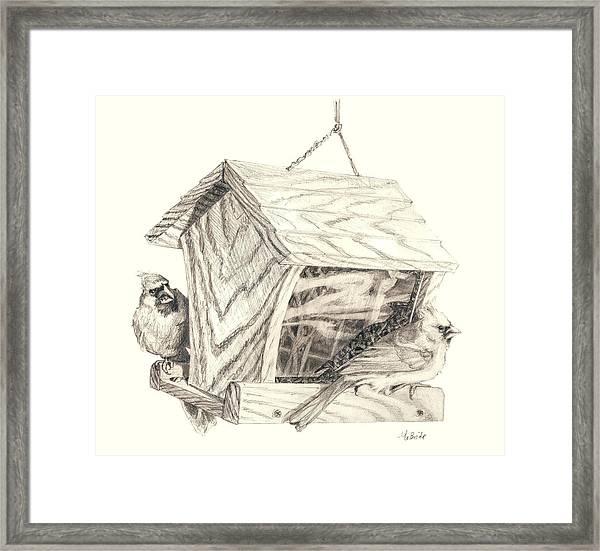 Cardinal Feeder Framed Print