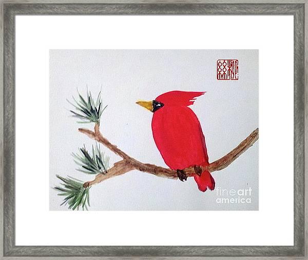 Cardinal In My Backyard Framed Print