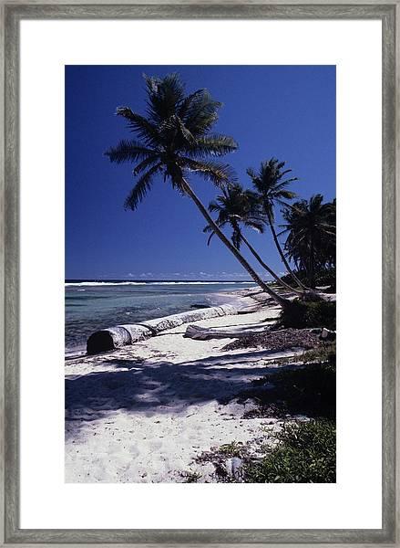 Caribbean Paradise Framed Print