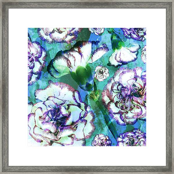 Carnation Dreams Framed Print