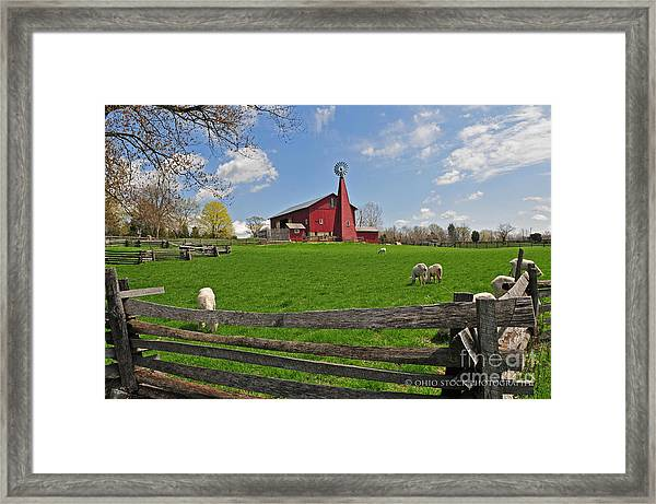 D14d-43 Carriage Hill Farm Metro Park Photo Framed Print