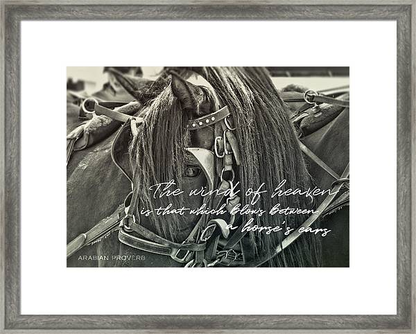 Carriage Horse Quote Framed Print