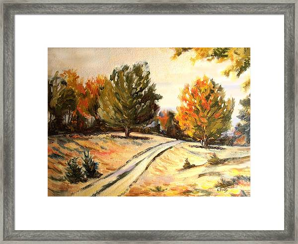 Carriage Path Framed Print