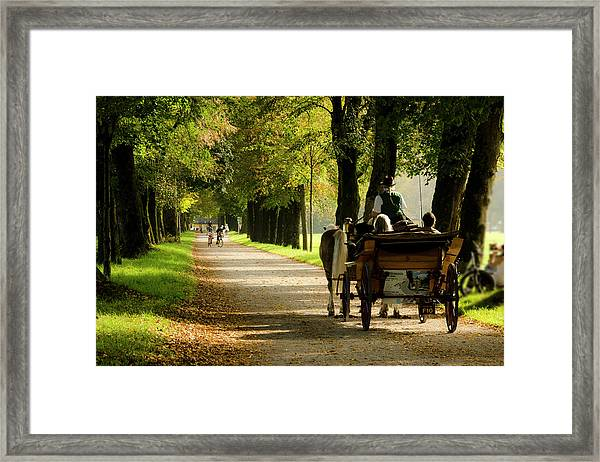 Carriage Ride In Hellbrunn Framed Print