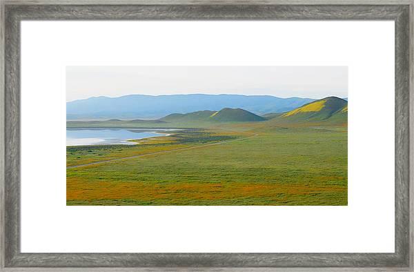 Carrizo Beauty Framed Print