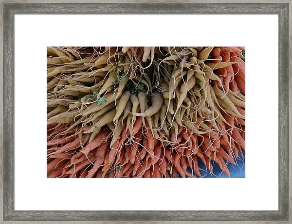 Carrots And Turnips Framed Print