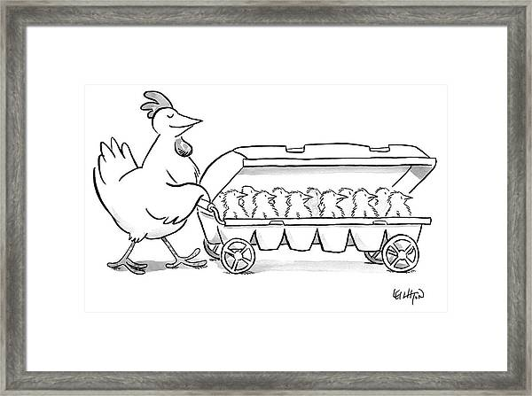 Carton Of Chicks Framed Print