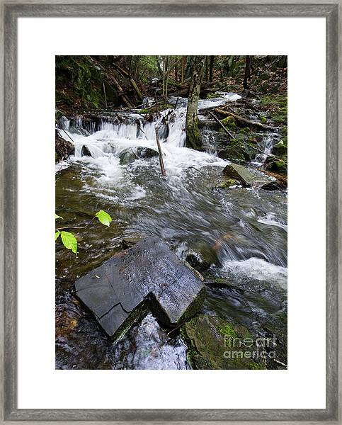 Cascade Falls Stream, Farmington, Maine  -30329 Framed Print