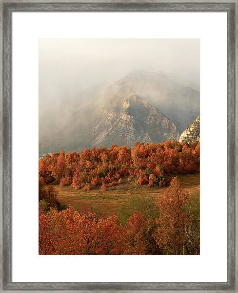 Cascading Fall Framed Print