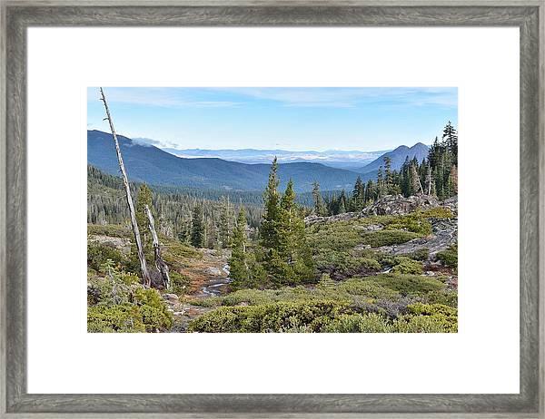 Castle Lake Trail Framed Print