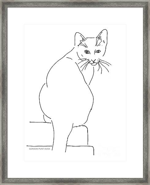 Cat-artwork-prints Framed Print