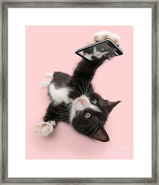 Cat Selfie Framed Print