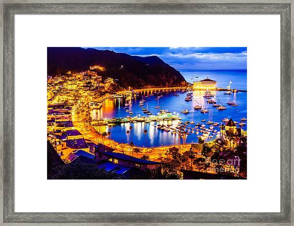 Catalina Island Avalon Bay At Night Framed Print by Paul Velgos