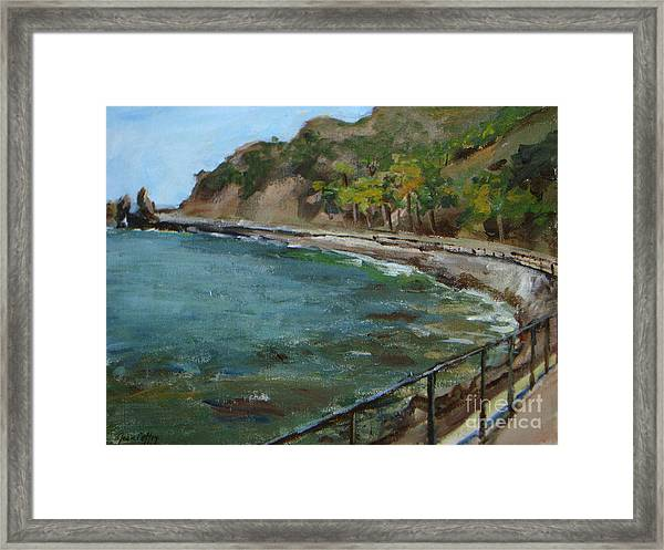 Catalina Trees At Lovers Cove Framed Print