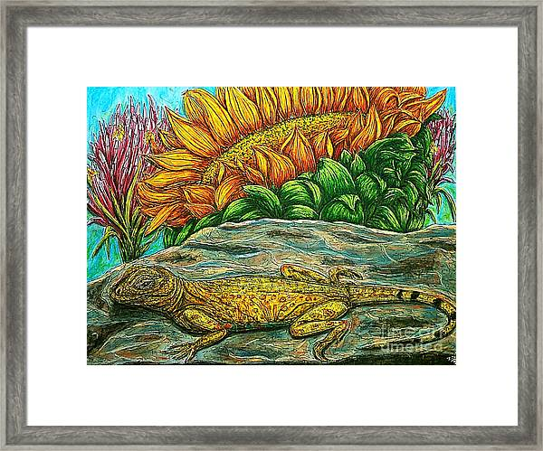 Catching Some Rays Framed Print