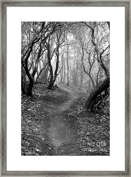 Cathedral Hills Serenity In Black And White Framed Print
