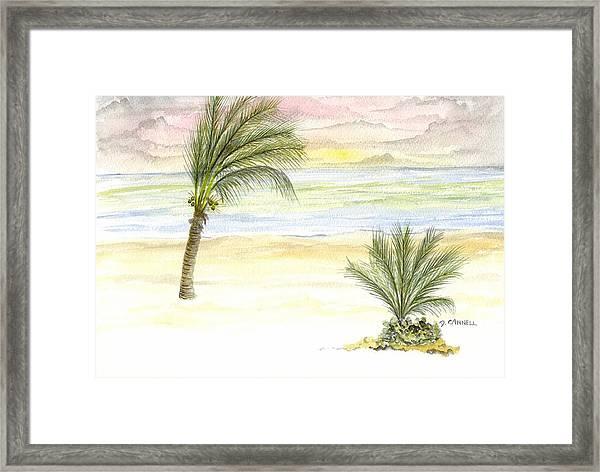 Cayman Beach Framed Print