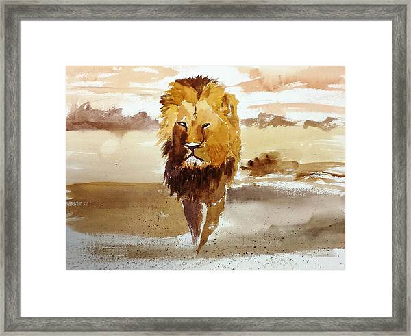 Cecil The Lion Framed Print
