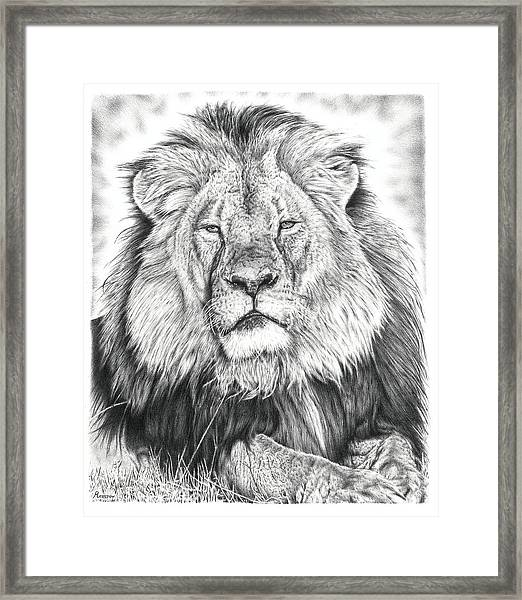 Cecil The Lion  Framed Print