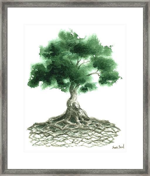 Celtic Tree Of Life Framed Print