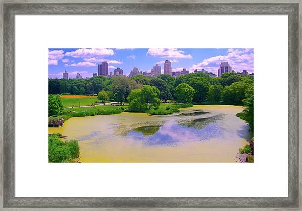 Central Park And Lake, Manhattan Ny Framed Print