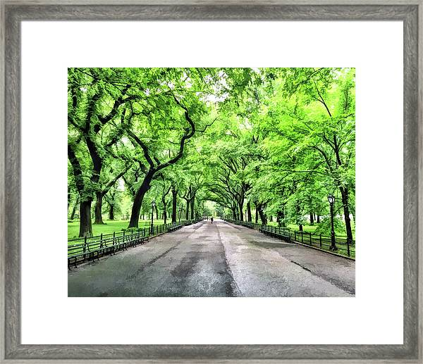 New York City Central Park Mall Framed Print