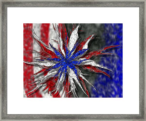 Chaotic Star Project - Take 3 Framed Print