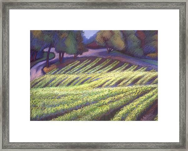 Chardonay Framed Print