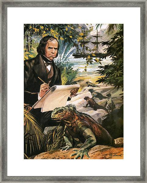 Charles Darwin On The Galapagos Islands Framed Print
