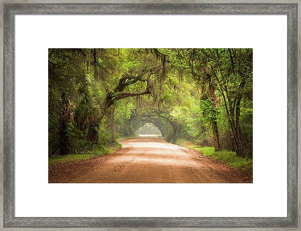 Charleston Sc Edisto Island Dirt Road - The Deep South Framed Print