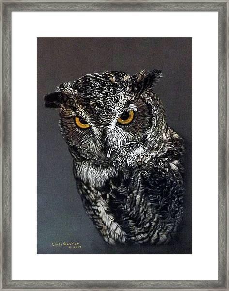Charley Framed Print