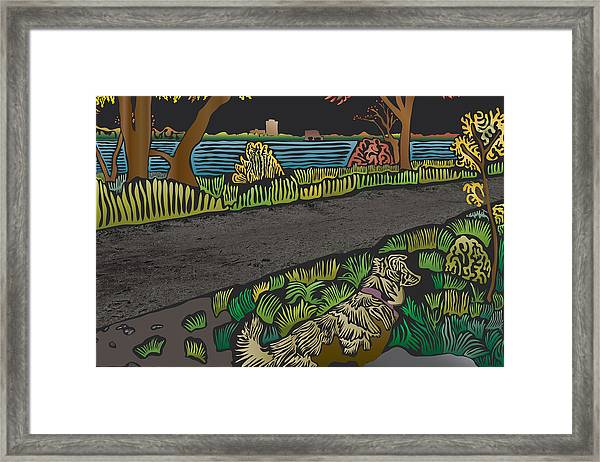 Charlie On Path Framed Print