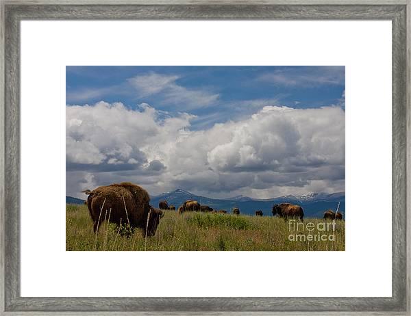 Charlie Russel Clouds Framed Print