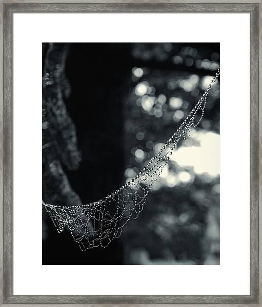 Charlotte's Necklace Framed Print