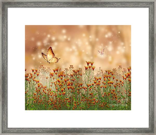 Charmed Blossoms Framed Print