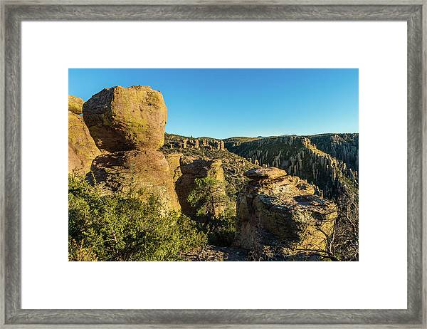 Cheers For Chiricahua Framed Print