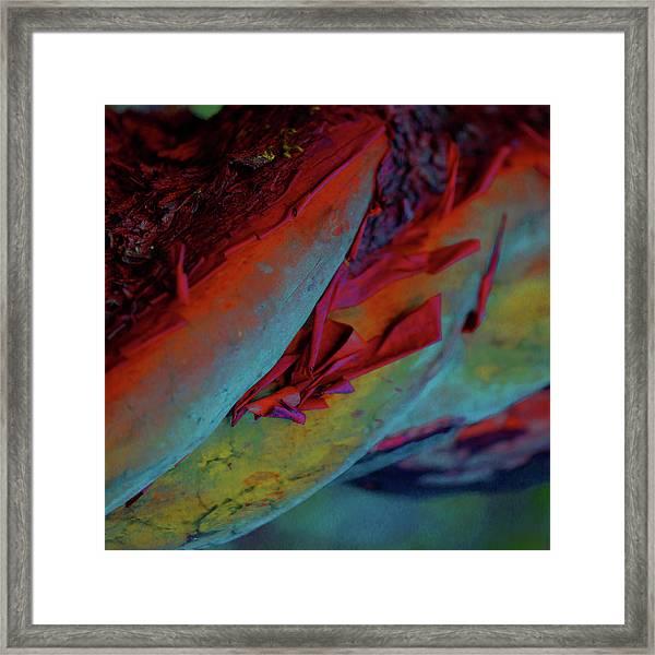 Cherish Framed Print