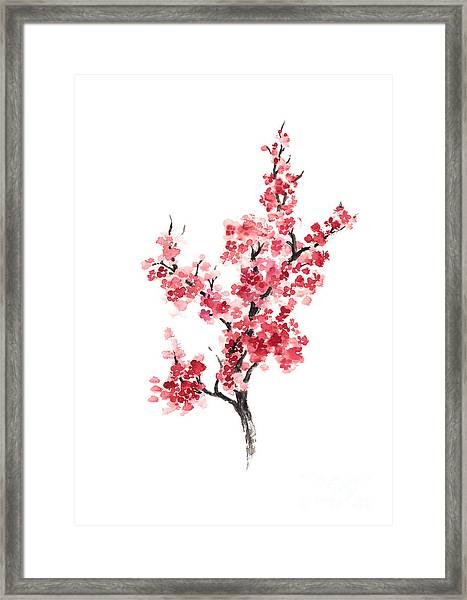 Cherry Blossom Japanese Flowers Poster Framed Print