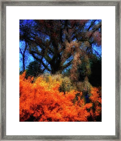 Cherry Blossoms P4 Framed Print