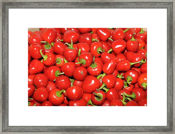 Cherry Peppers Framed Print