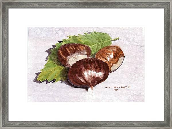 Chestnuts Framed Print