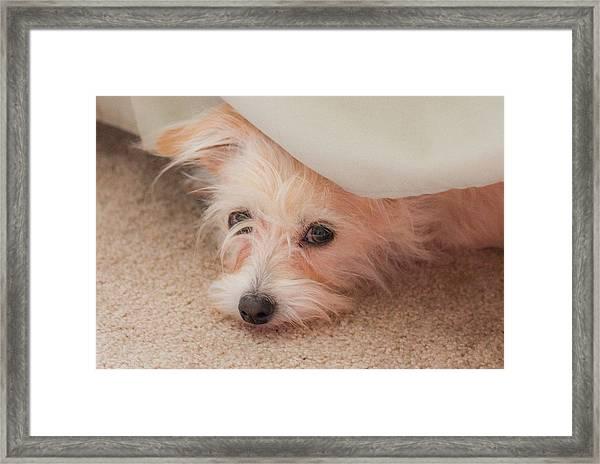 Chica In Hiding Framed Print