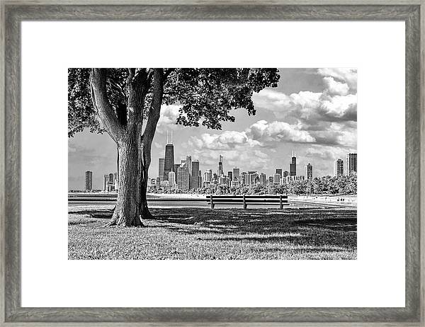 Chicago North Skyline Park Black And White Framed Print