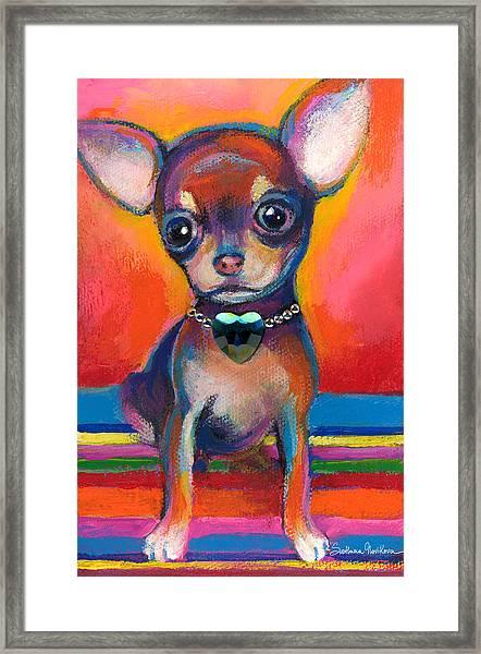 Chihuahua Dog Portrait Framed Print