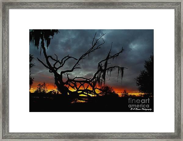 Chilling Sunset Framed Print