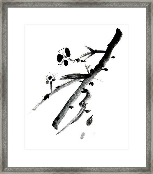 Chinese Brush L Framed Print by Danny Pike