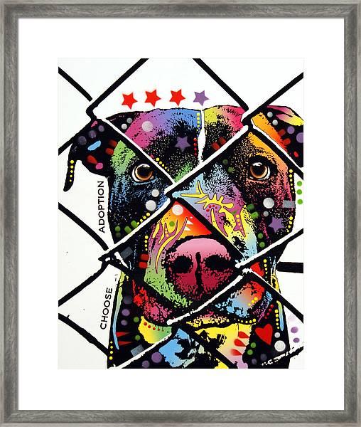Choose Adoption Pit Bull Framed Print