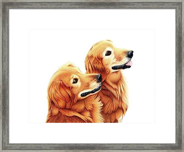 Chris And Riggs Framed Print